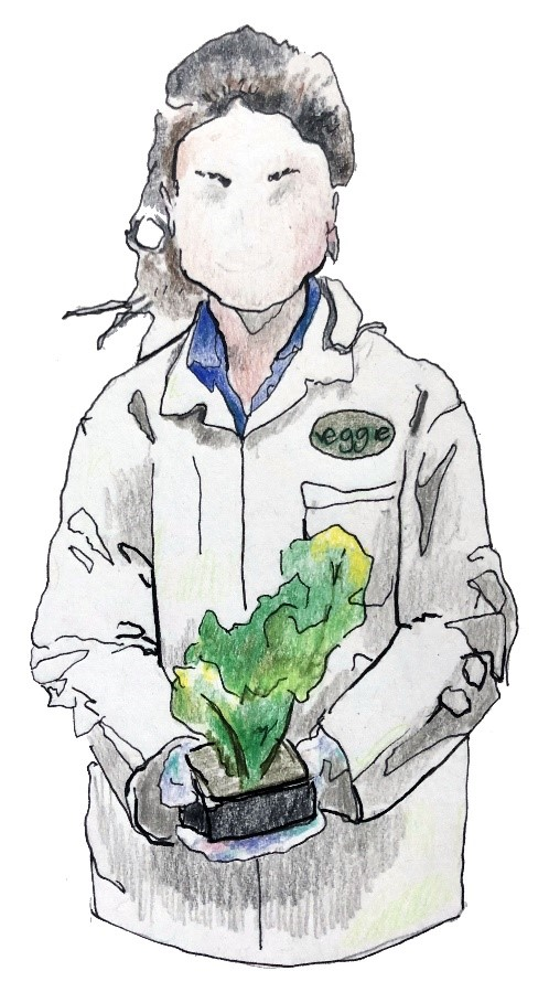 A drawing of Dr Gioia Massa. She has long dark hair, and is wearing a lab coat. There is a small label on the coat that reads 'Veggie'. In her hands, she is holding a plant, which appears to be growing out of a brick of soil that she can hold in her hands.