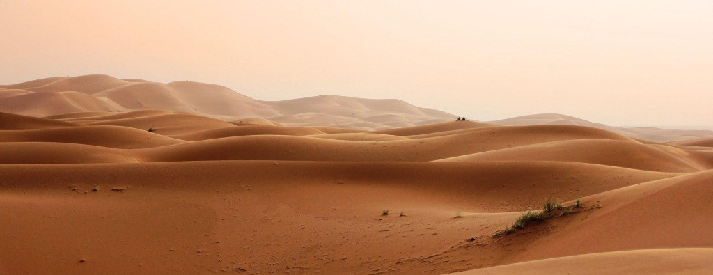 A photograph of the Sahara Desert. Huge orange sand dunes roll across the landscape, and in the background even larger ones rise up like mountains. There is some small greenery, but the land looks harsh and dry.