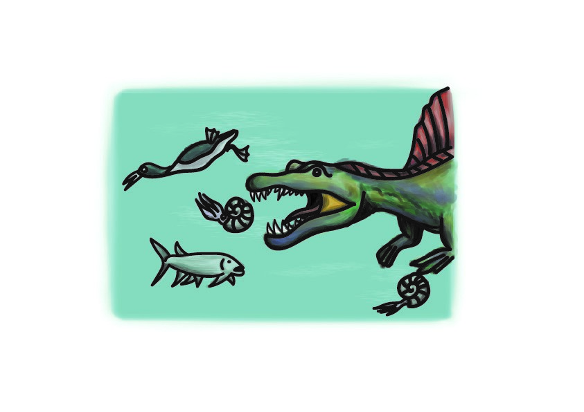 A drawing of Spinosaurus underwater, chasing prey that would have been around in the Cretaceous - a strange underwater duck, a large fish, and two ammonites (small shellfish that look similar to squid).
