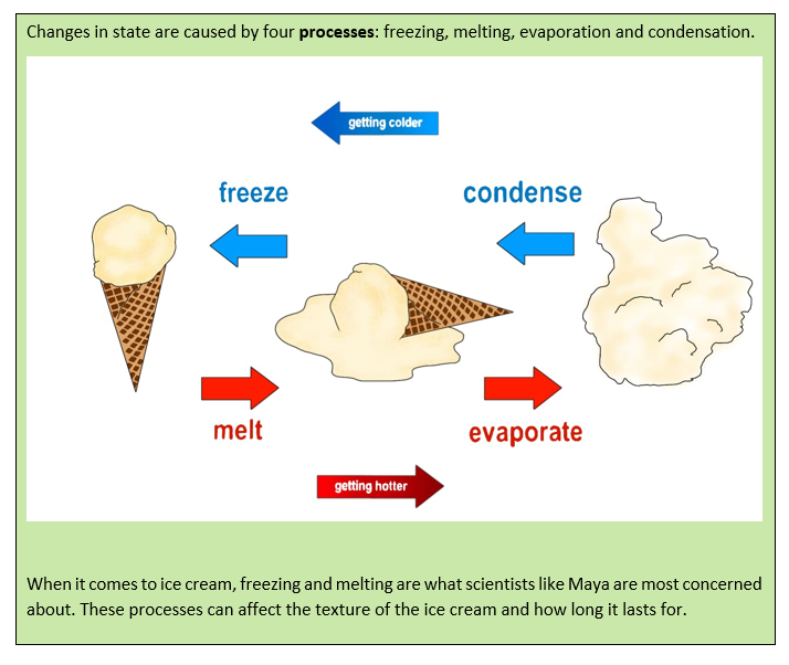 Changes in state are caused by four processes: freezing, melting, evaporation, and condensation. As temperatures decrease, gases condense into liquids. At even lower temperatures, liquids become solids by freezing. Turn the temperature back up, and solids melt into liquids. Even higher, and the liquids evaporate into gases. When it comes to ice cream, freezing and melting are what scientists like Maya are most concerned about. These processes can affect the texture of the ice cream and how long it lasts for.